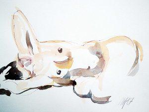 mgp studio di pittura